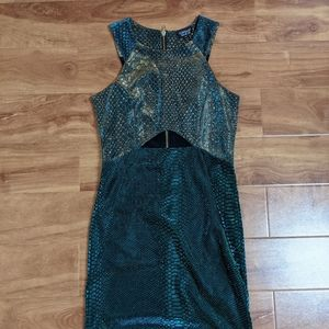 Topshop colour shifting dress